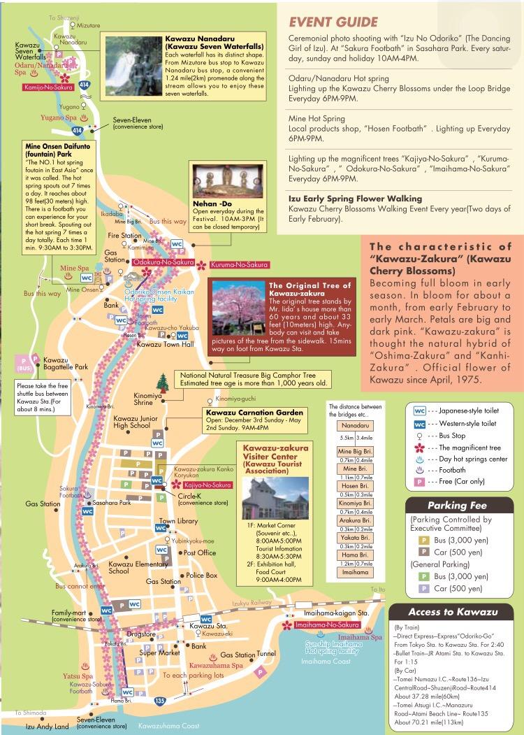 Kawazu Zakura Festival Guide
