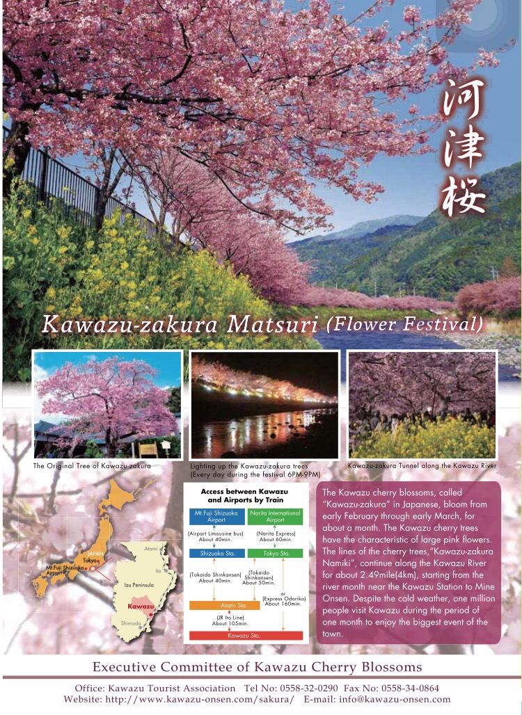 Kawazu Zakura Matsuri Information
