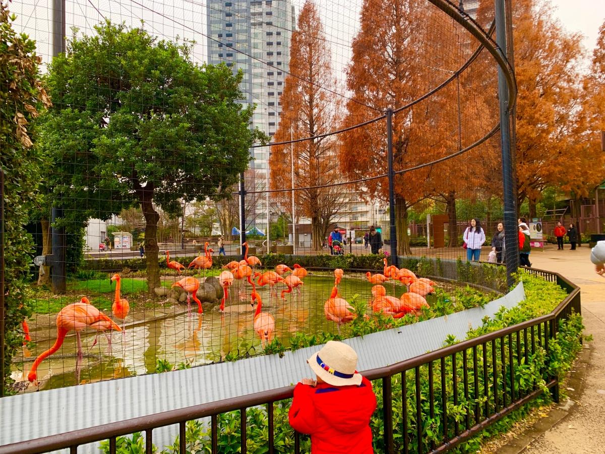 Wisata Anak dan Halal di UenoTokyo